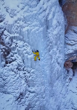 drone mice climbing 2017